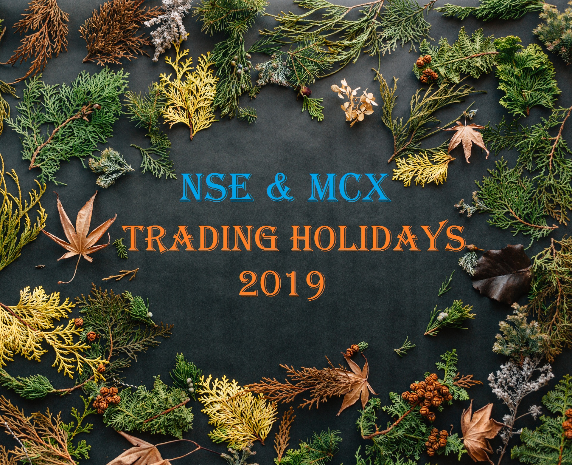 Trading-Holidays-for-the-year-2019-NSE-and-MCX